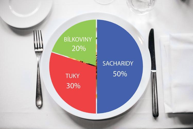 Optimální dlouhodobý poměr konzumovaných makroživin - bílkoviny, tuky, sacharidy