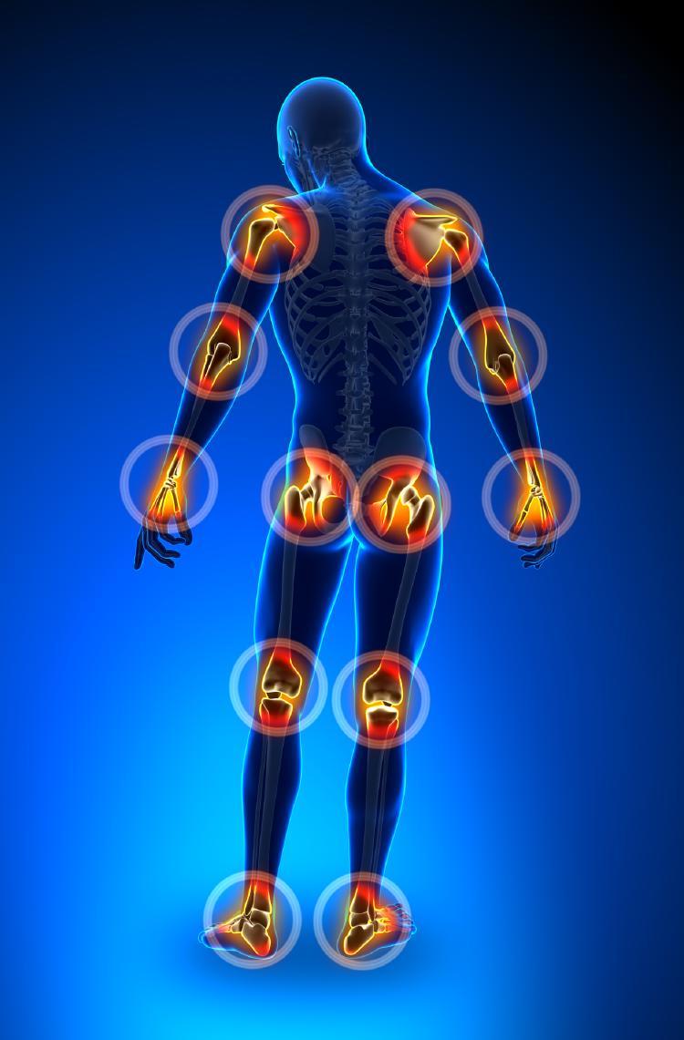 Kĺby ľudského tela.